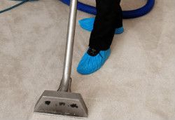 Carpet Cleaning Holloway