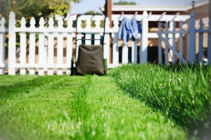 grass-cutting-services-holloway