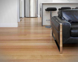 hard-floor-cleaning-polishing-holloway